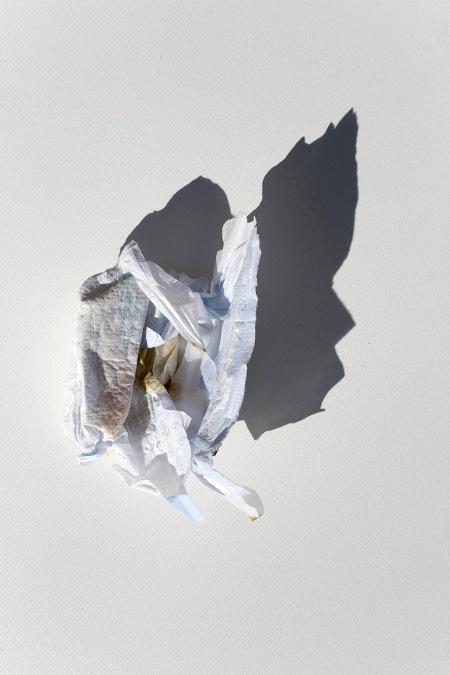 UlgenSemerci-FliesAndDefecates-UcarVeKaKalar