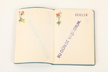 Cengiz Çekil, Diary, 1976.