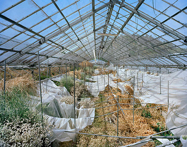 Yishay Garbasz, Greenhouse for ornamental growing, Rte 256, Harada, Okuma-machi, Futaba, Fukushima Nuclear Exclusion Zone (Ritual and Reality series), 2014. Courtesy of the artist.